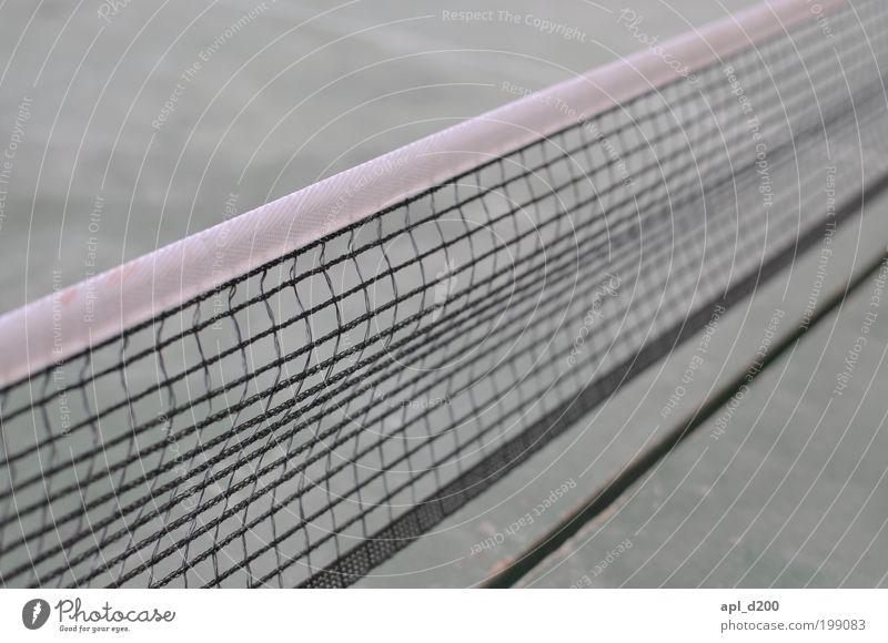 Ping und Pong grün Ferien & Urlaub & Reisen Leben Sport Spielen Bewegung grau braun Zufriedenheit Freizeit & Hobby ästhetisch außergewöhnlich Fröhlichkeit authentisch Sportveranstaltung Tennisnetz
