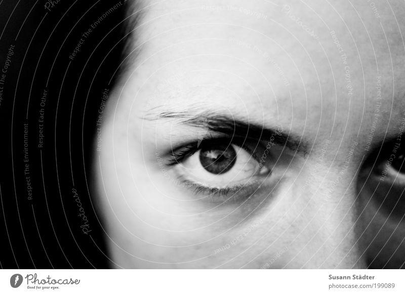 Ria elegant feminin Frau Erwachsene Kopf Auge Denken schön Augenbraue Starrer Blick Gedanke stark Ungeschminkt beobachten Schwarzweißfoto Nahaufnahme