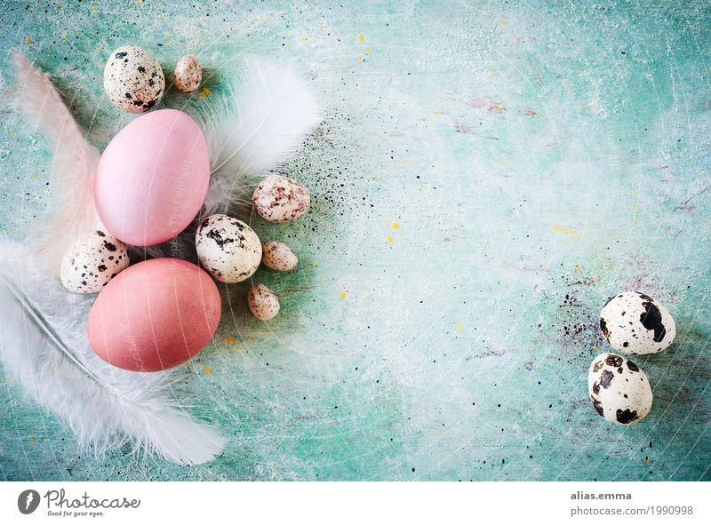 Easter Background Ostern frohe ostern Osterei Ei türkis Hintergrundbild Textfreiraum Wachtelei Frühling rustikal Grunge Strukturen & Formen April Feder