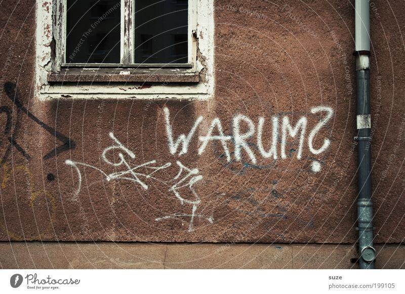 Wer weiß ... alt Einsamkeit Haus Fenster Graffiti Wand Traurigkeit Mauer Fassade trist Armut Schriftzeichen Vergänglichkeit Zeichen Bildung schreiben
