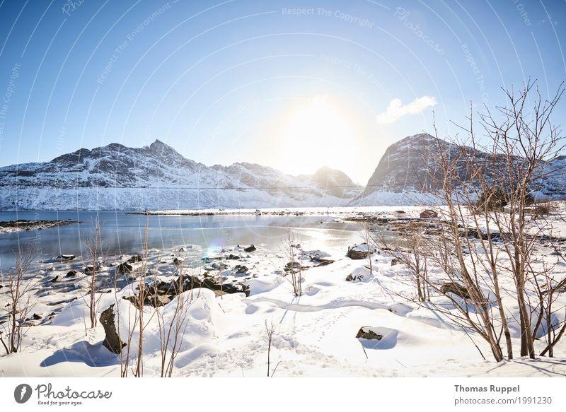 Traumwetter auf den Lofoten Natur Ferien & Urlaub & Reisen blau weiß Sonne Landschaft Ferne Winter Berge u. Gebirge schwarz Umwelt Schnee Freiheit Tourismus