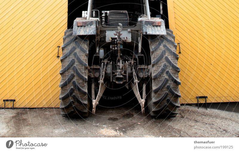 Eingeklemmt - oder Bauernopfer Garagentor Arbeit & Erwerbstätigkeit Arbeitsplatz Landwirtschaft Forstwirtschaft Feierabend Dorf Stall Tor parken Traktor gelb