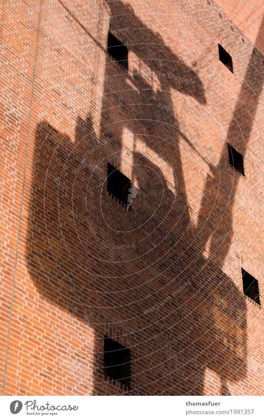 Schatten, Kran, Mauer Kranfahrer Hafen Güterverkehr & Logistik Hamburg Hafenstadt Stadtzentrum Bauwerk Konzerthaus Konzerthalle Elbphilharmonie Wand Fassade