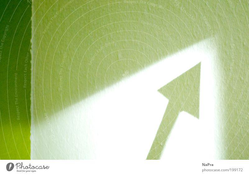 Grüner Pfeil Natur weiß Sonne grün Wand Bewegung Freiheit Mauer Raum Kunst Design Umwelt Erfolg Lifestyle Energiewirtschaft Macht