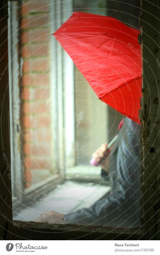 Anonym. Mensch Arme Sommer schlechtes Wetter Regen Haus Fenster Jacke Regenschirm Glas Denken leuchten warten Coolness frei rot Glaube Sehnsucht Enttäuschung