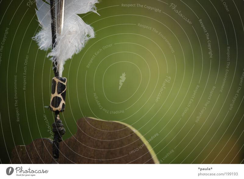 Kleiner Traum... Natur schön grün weiß Erholung ruhig natürlich Holz Kunst braun träumen Zufriedenheit Dekoration & Verzierung frei authentisch ästhetisch