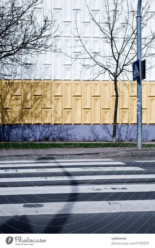 [HAL] 10 Meter neben Steffne Baum Stadt Straße Leben Wand Stil Bewegung Freiheit träumen Mauer Wege & Pfade Architektur Design Umwelt Zeit Verkehr