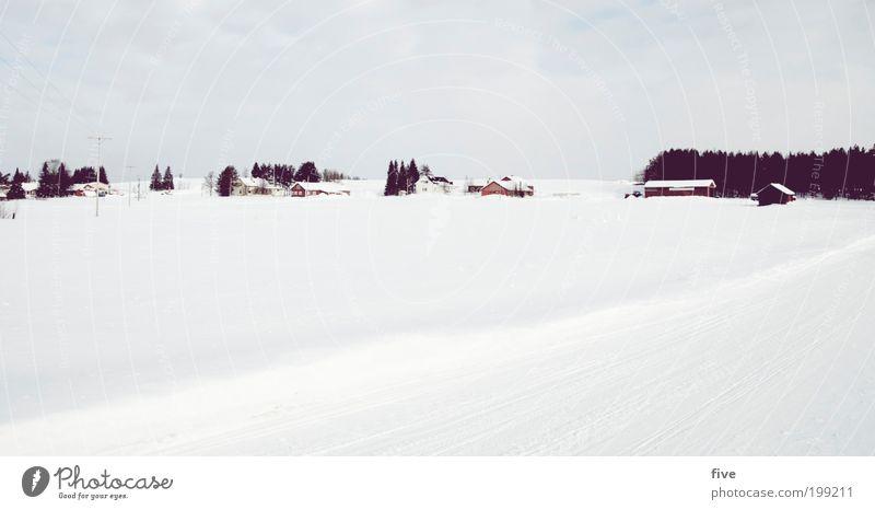 luosto XXIII Himmel Baum Pflanze Ferien & Urlaub & Reisen Wolken Winter Haus Ferne Wald Straße kalt Wiese Schnee Freiheit Wege & Pfade Feld