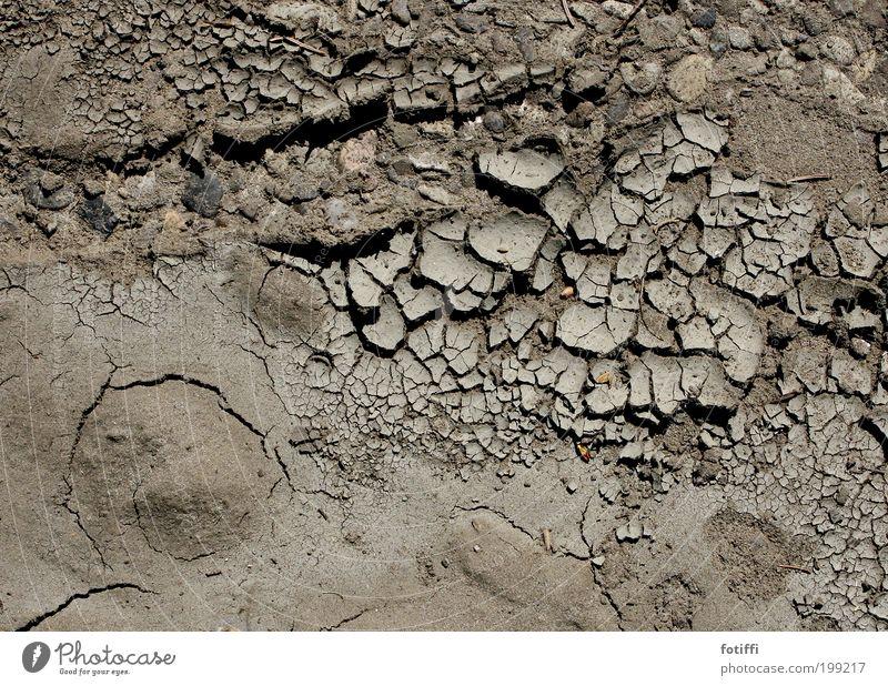Wüstenai Natur Pflanze ruhig Wärme Sand braun Erde Klima Oberfläche trocken Müdigkeit Riss Erwartung Durst Klimawandel Dürre