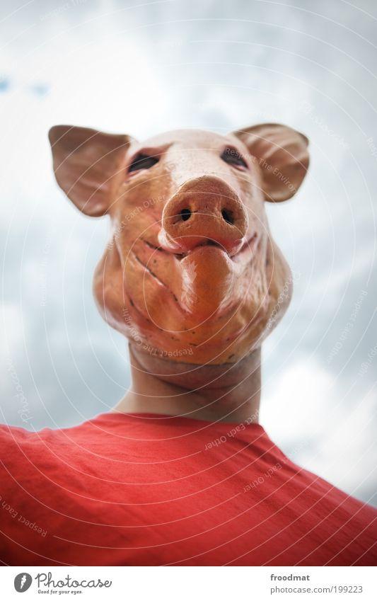 schweinskopfsülze Freude Tier maskulin Nase Tiergesicht Maske Karneval gruselig trashig Hausschwein skurril Ekel Kopf abwärts Schwein Hochmut