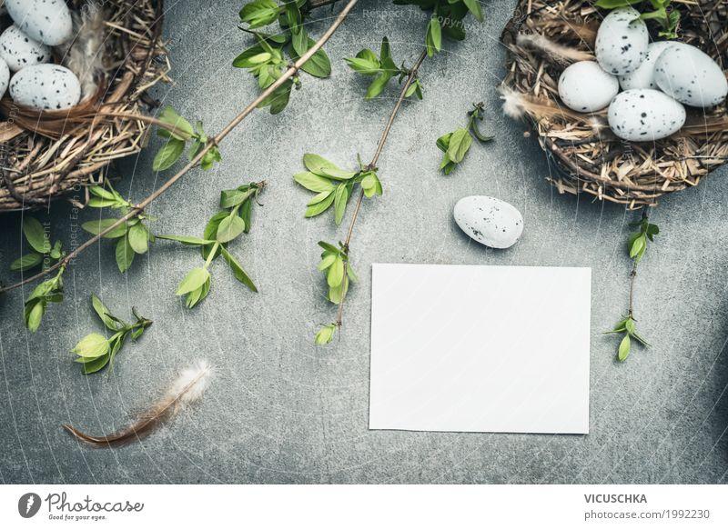 Ostereier Nest mit Eier und weißer Papier Karte Natur Pflanze Blume Blatt Freude gelb Blüte Frühling Liebe Stil Feste & Feiern Design Dekoration & Verzierung