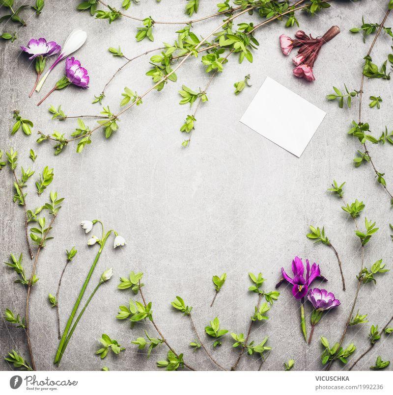 Frühling Natur Rahmen mit Frühlingszweigen und Blumen Stil Design Sommer Garten Pflanze Gras Sträucher Blatt Blüte Grünpflanze Blühend Liebe Hintergrundbild