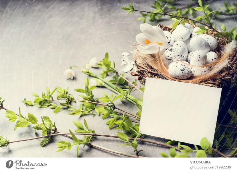 Ostern Grußkarte und Nest mit Eiern Stil Design Dekoration & Verzierung Feste & Feiern Natur Pflanze Frühling Blume Grünpflanze Tradition Hintergrundbild