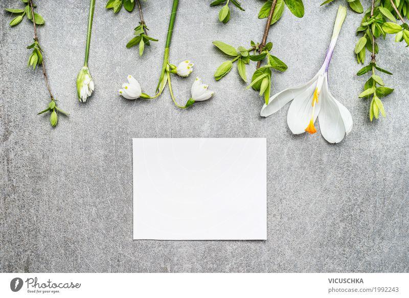 Leere weiße Karte mit Maiglöckchen, Krokusse und Frühlingszweige Stil Design Garten Natur Pflanze Blume Blatt Blüte Dekoration & Verzierung Blumenstrauß