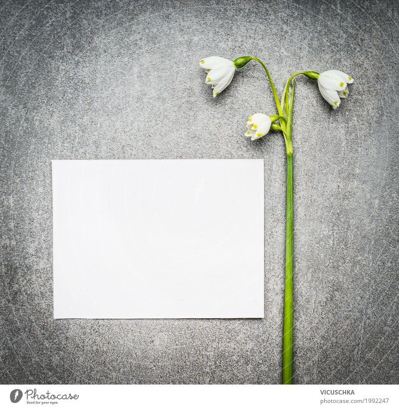 Leere weiße Karte mit Maiglöckchen Lifestyle Stil Design Garten Feste & Feiern Muttertag Natur Pflanze Frühling Blume Blatt Blüte Dekoration & Verzierung