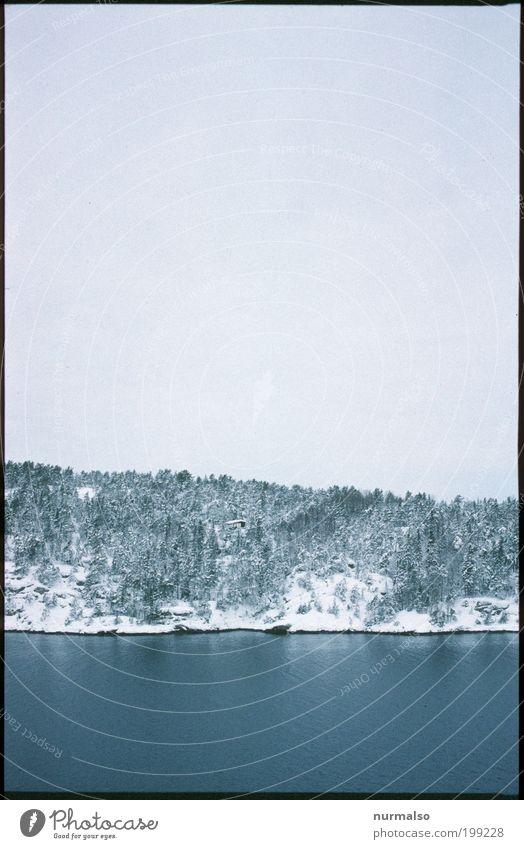 Eisgraublau Natur Himmel Baum Meer Pflanze Winter Ferien & Urlaub & Reisen Tier Ferne Wald Landschaft Küste Kunst Umwelt Felsen
