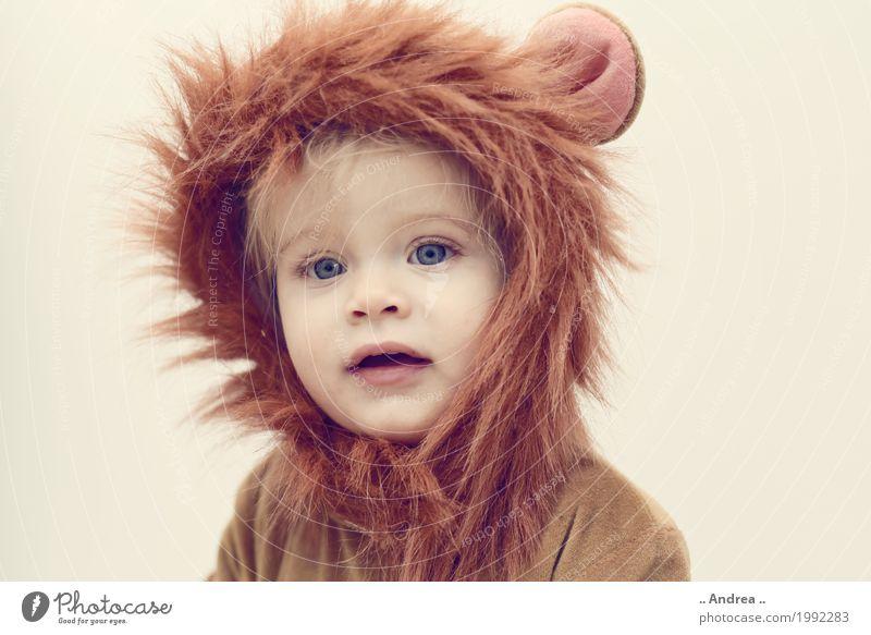 Little Lion Kindergarten feminin Kleinkind Mädchen Kindheit 1 Mensch 1-3 Jahre Bekleidung Karneval Karnevalskostüm verkleiden verkleidet Löwe kuschlig Halloween
