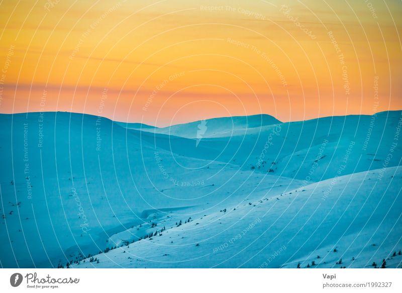 Sonnenuntergang in Winterbergen Himmel Natur Ferien & Urlaub & Reisen blau weiß Baum Landschaft rot Berge u. Gebirge schwarz Umwelt gelb natürlich Schnee