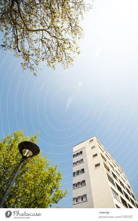 Wohnheim Stadt Baum Sommer Blatt Architektur Gebäude hell hoch Hochhaus Perspektive Lifestyle Sträucher Laterne Schönes Wetter Straßenbeleuchtung