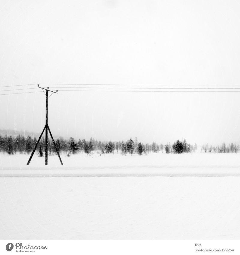finnischer strommasten Ferien & Urlaub & Reisen Ausflug Ferne Freiheit Winter Schnee Winterurlaub Umwelt Natur Himmel Wolken Pflanze Baum Sträucher Wiese Feld