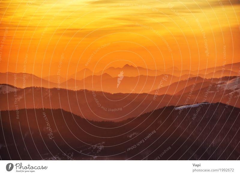 Sonnenuntergang in Winterbergen Himmel Natur Ferien & Urlaub & Reisen Sommer weiß Landschaft rot Wolken Wald Berge u. Gebirge schwarz Umwelt gelb natürlich