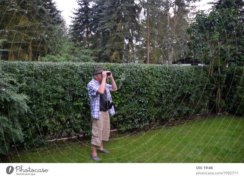 Spanner. Mensch Mann Sommer grün Einsamkeit Erwachsene Senior Garten 60 und älter stehen Schönes Wetter beobachten Neugier geheimnisvoll entdecken Konzentration