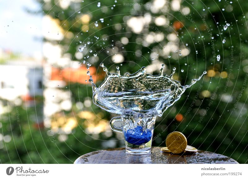 Ausbruch schön Sommer Wasser Erholung Leben Stil Zeit Design frei elegant Glas Glas ästhetisch Lebensfreude Wandel & Veränderung Wellness