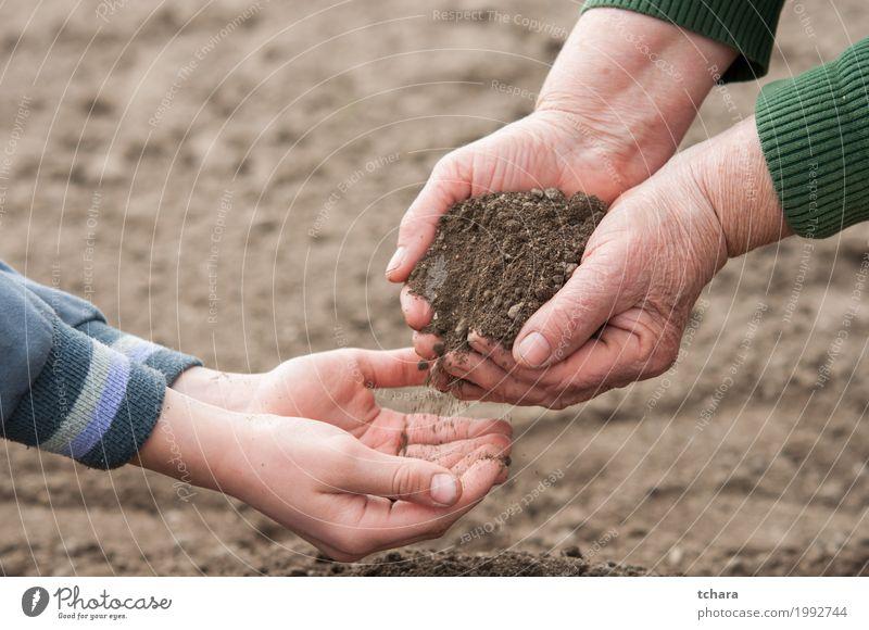 Rette die Natur Mensch Kind Frau Pflanze Hand Erwachsene Umwelt Leben natürlich Garten braun Erde dreckig Wachstum Boden