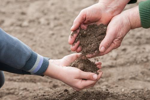 Rette die Natur Leben Garten Kind Gartenarbeit Frau Erwachsene Hand Umwelt Pflanze Erde Wachstum dreckig natürlich braun organisch Ackerbau Boden Kompost