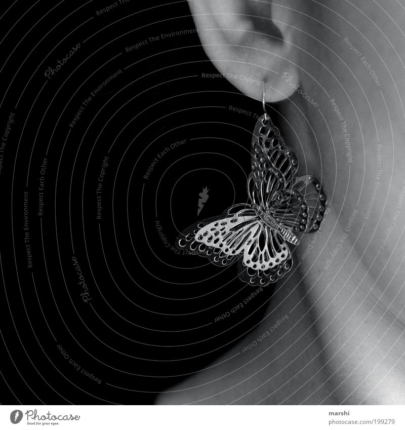 Schmetterling Tier schön Ohr Ohrringe Accessoire hängend glänzend Hals feminin Dekoration & Verzierung Frühlingsgefühle klein Detailaufnahme Schwarzweißfoto