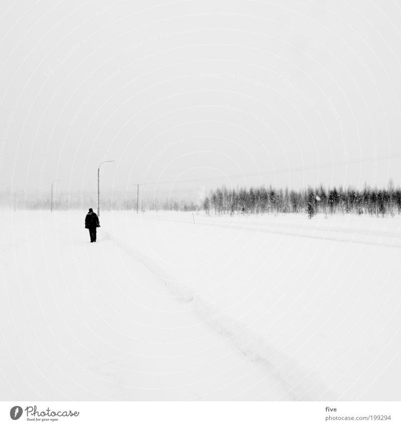 und tschüss Mensch Himmel Natur Mann Ferien & Urlaub & Reisen Baum Pflanze Winter Erwachsene Umwelt Ferne Straße kalt Schnee Wege & Pfade Freiheit