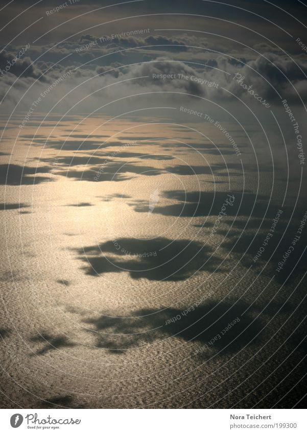 ... über den Wolken ... Umwelt Landschaft Himmel Horizont Sonnenlicht Sommer Klima Schönes Wetter Nordsee Meer Fenster Verkehr Luftverkehr Flugzeug im Flugzeug