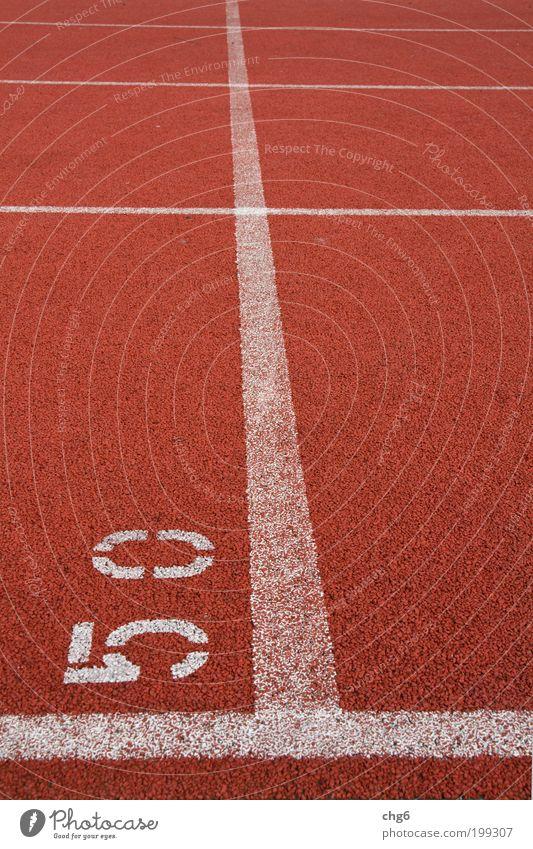 ..nur noch 50 Meter weiß rot Sport Bewegung Linie braun gehen laufen Schilder & Markierungen Geschwindigkeit Ziffern & Zahlen Kunststoff Stress Willensstärke Ausdauer Leistung