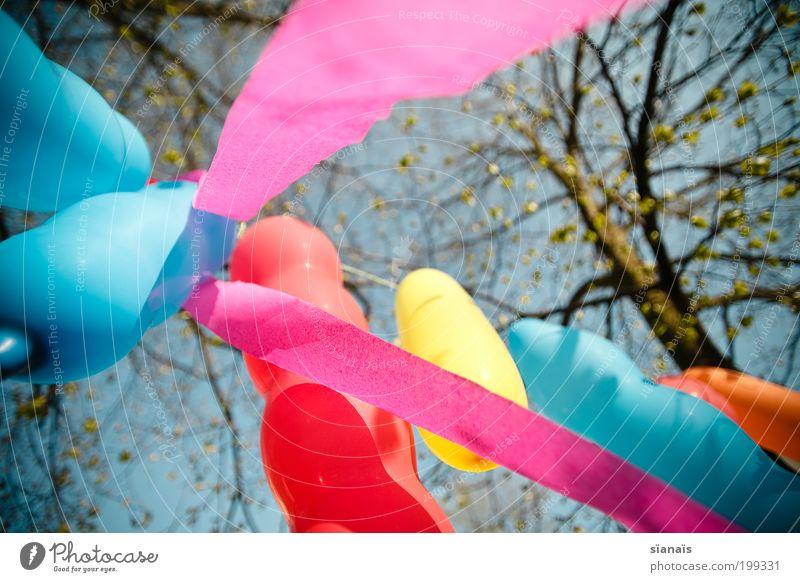 kindergeburtstag Freude Spielen Frühling Stimmung Feste & Feiern Geburtstag Fröhlichkeit Dekoration & Verzierung Luftballon Schönes Wetter diagonal Lebensfreude