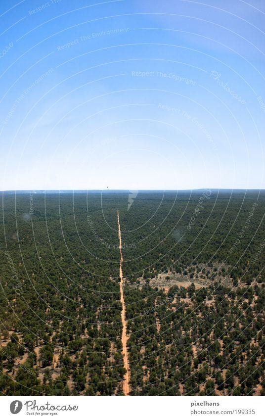 immer der Straße nach Ferne Freiheit Umwelt Natur Landschaft Erde Sand Himmel Wolkenloser Himmel Horizont Wärme Baum Wald Verkehr Verkehrswege Hubschrauber Holz