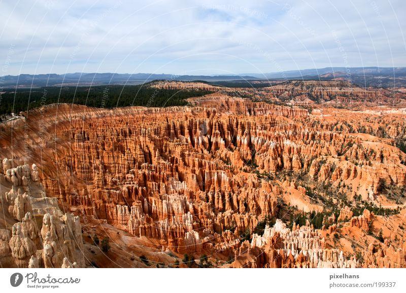 Bryce Canyon Himmel Natur blau alt Ferien & Urlaub & Reisen weiß grün Baum rot Sommer Ferne Landschaft Holz Sand Stein Horizont