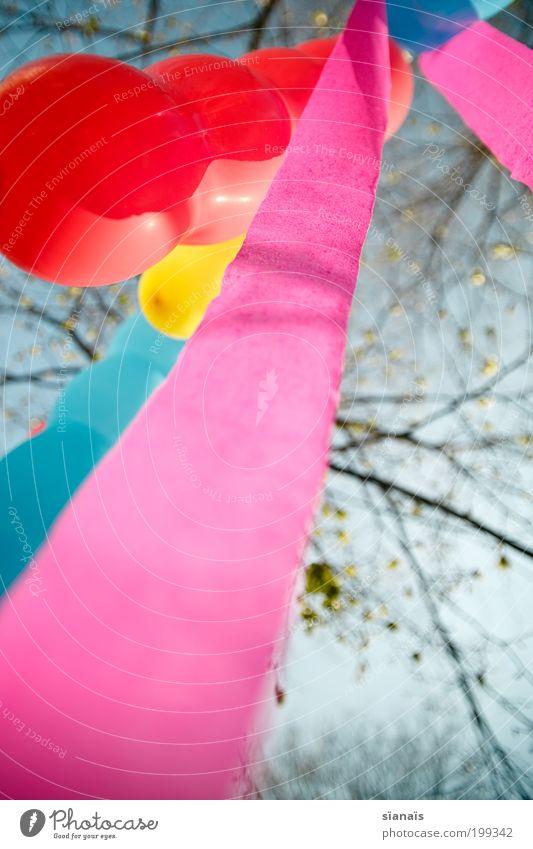 baumschmuck Feste & Feiern Geburtstag Freude Fröhlichkeit Lebensfreude Ballone mehrfarbig Gartenfest spielen verträumt diagonal Brise Frühling rosa