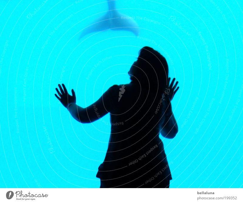 Faszination Mensch feminin Frau Erwachsene Haare & Frisuren Rücken Arme Hand Finger Gesäß Natur Tier Wildtier Aquarium Delphine Flosse Schwanzflosse 1 Stimmung