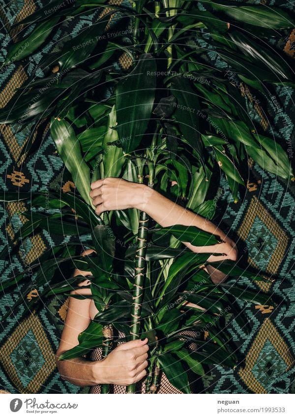 pflanzenliebe Natur Jugendliche Pflanze Junge Frau Hand feminin Kreativität exotisch Zoo