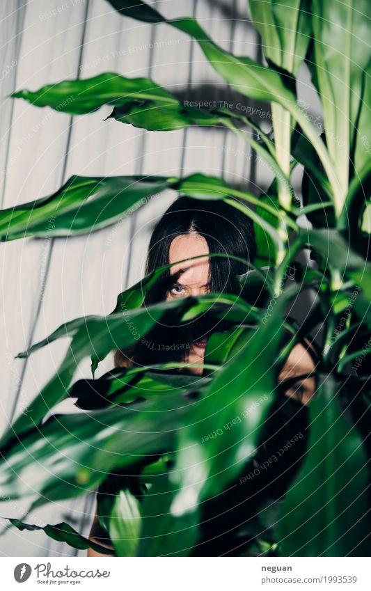 amazonian exotisch Freude feminin Kopf Zoo Natur Pflanze Haustier füttern Aggression bedrohlich Schutz Angst Abenteuer Einsamkeit Scham dshungle spiel frau