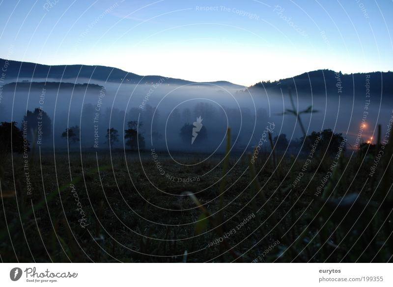 Nebel Ferne Freiheit Sommer Umwelt Natur Landschaft Pflanze Tier Luft Wasser Himmel Wolkenloser Himmel Klima Klimawandel Wetter Schönes Wetter Baum Gras