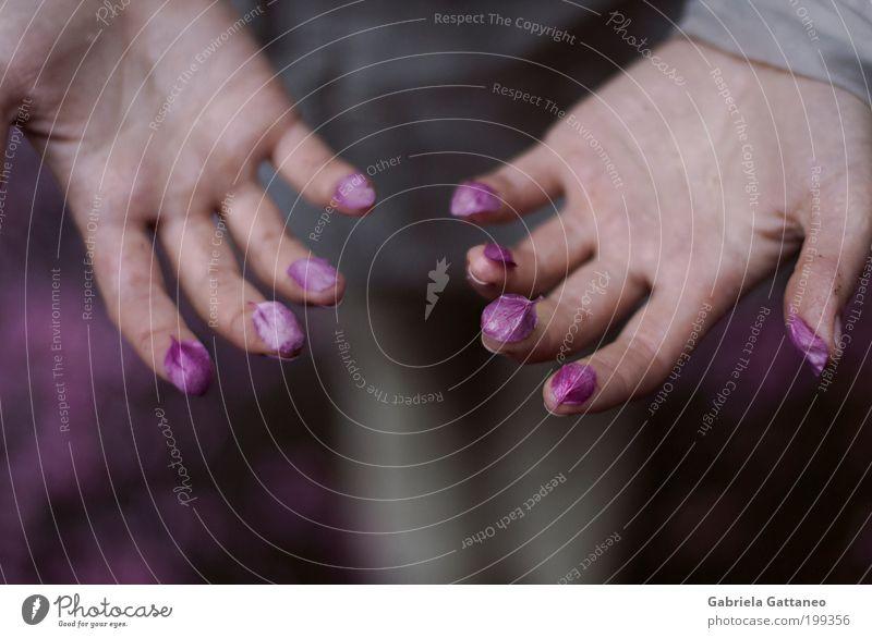 Fühlt man was Hand Finger Natur Blume violett Gefühle Einigkeit schön Petal Samthandschuhe schmücken auseinandergefallen Naturkosmetik Duft Duftstoff Essenz