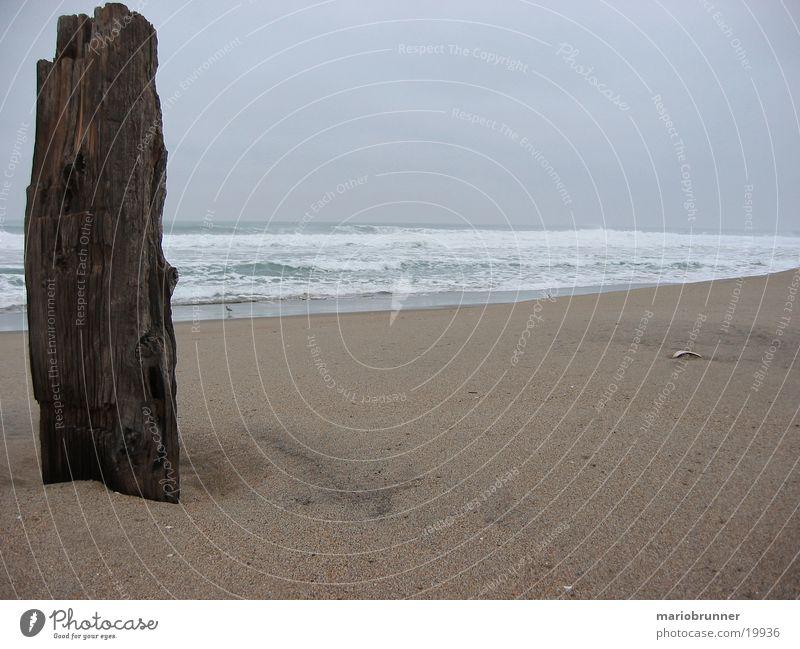 highway_no1_beach Strand Meer Wellen Pazifik Holz Kalifornien Einsamkeit leer Sand Balken USA Pazifikstrand Sandstrand Menschenleer Totholz Gischt Brandung