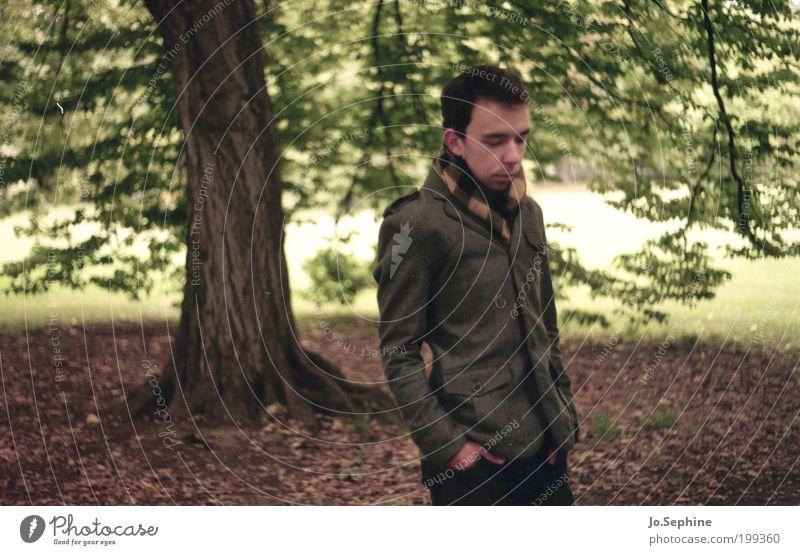 Where do we go now but nowhere? maskulin Junger Mann Jugendliche 1 Mensch 18-30 Jahre Erwachsene Baum Park Schal Vorsicht ruhig Herbst Jacke Spaziergang