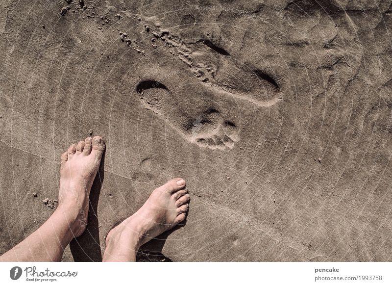 kommen und gehen Sommer Sommerurlaub Strand Meer Fuß Urelemente Sand Schönes Wetter beobachten Bewegung Denken Fitness rennen Blick nackt nass natürlich Freude