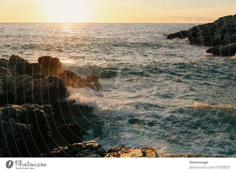 coucher du soleil à la Madrague de Montredon Natur Landschaft Urelemente Wasser Wassertropfen Schönes Wetter Wellen Küste Meer Erholung Sonnenlicht sprudelnd