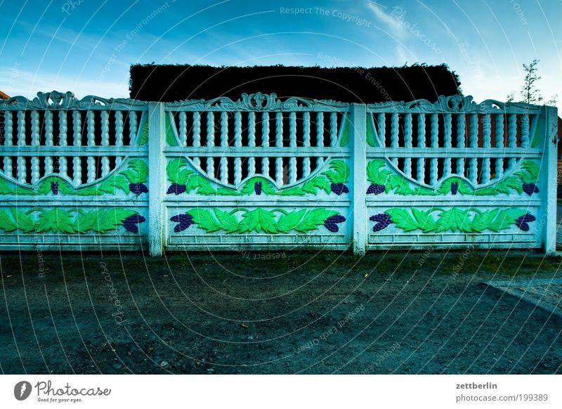 Abend Häusliches Leben Dekoration & Verzierung Kitsch Dorf Zaun Grenze Nachbar Ranke Hecke Kleinstadt Grundstück Pflanze Gebäude Grundstücksgrenze Nachbarhaus
