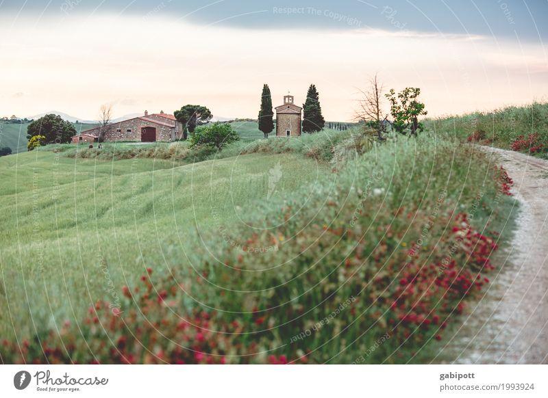 Vitaleta Kapelle, Val d'Orcia, Toskana, Italy Ferien & Urlaub & Reisen Tourismus Ausflug Sightseeing Umwelt Natur Landschaft Pflanze Erde Luft Himmel Sommer