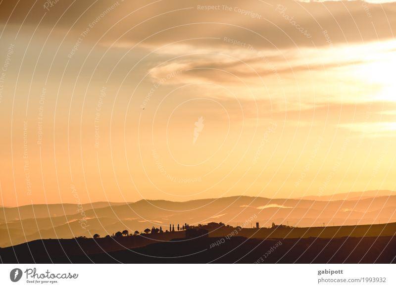 toskanisches Hachland Himmel Natur Ferien & Urlaub & Reisen Pflanze Sommer Baum Landschaft Erholung Ferne Umwelt gelb Freiheit Tourismus braun Horizont Ausflug