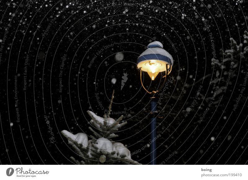 Laterne, Mond und Sterne Winter Schnee Schneefall Eis Frost Weihnachtsbaum Straßenbeleuchtung Licht Weihnachtsmarkt Winterurlaub Nadelbaum Markt
